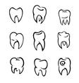 Set of teeth vector image