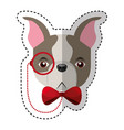 cute french bulldog male with hipster accessory vector image vector image