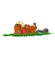 dead beaver vector image vector image