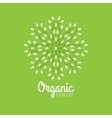 eco organic emblem logo design template vector image vector image