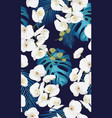 white orchid floral seamless pattern vector image