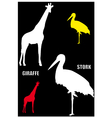 Giraffe and stork vector image vector image
