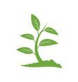 green tree logo icon design template vector image