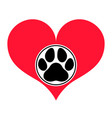 heart with a paw vector image vector image