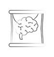 human brain flask vector image