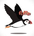 puffin bird 6 vector image vector image