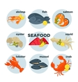 Seafood set crab lobster fish and shrimp squid vector image vector image