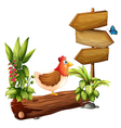 A chicken and a butterfly near the wooden arrows vector image vector image