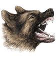 Angry German Shepherd 1 vector image vector image