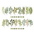 botanic botanical clipart vector image vector image