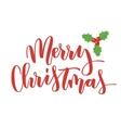 Merry Christmas hand written inscription vector image