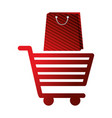 shopping online cart and bag market vector image