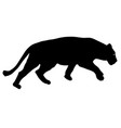 silhouette of the lioness on a white background vector image
