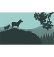 Silhouette of zebra on the hills vector image vector image