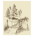 suspension bridge in the forest nature sketch vector image vector image