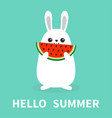 white bunny rabbit holding eating watermelon vector image vector image