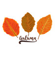 autumn watercolor style seasonal card design vector image