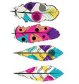 colorful decorative feathers vector image vector image