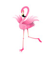 flamingo bird pink and colorful cartoon for kids vector image