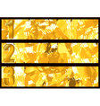 gold textured banner vector image vector image