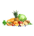 healthy food organic fruit and berries vector image vector image