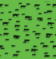 sheep goats and cows and walking on green pasture vector image