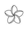 spa salon plumeria flower linear icon vector image