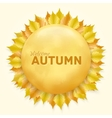 Beautiful autumn frame with yellow leaves vector image