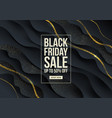 black friday template design vector image vector image