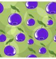 blueberry background vector image vector image