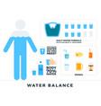 body water balance flat vector image vector image