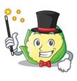 magician cauliflower character cartoon style vector image