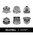 set sport volley logo vector image