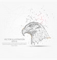 eagle head low poly wire frame on white background vector image