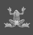frog in engraving vector image vector image
