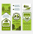 green eco landscape design company banners vector image vector image