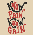 Know pain Know Gain vector image vector image