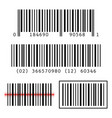 set collection of barcodes vector image