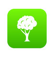 tree icon digital green vector image