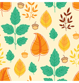 autumn leaves and acorns vector image