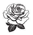black and white rose icon with leaves hand drawn vector image vector image