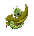 caterpillar eating a leaf cartoon vector image