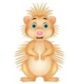Cute porcupine cartoon vector image vector image