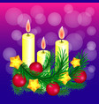 sprigs of christmas tree decorated with gold vector image