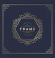 vintage flourishes ornament swirls lines frame vector image