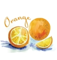 watercolor orange fruit label with the inscription vector image