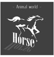 animal world horse running black white picture vec vector image