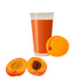 apricots and glass of juice vector image