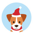 dogs icon wearing red hat santa claus vector image vector image