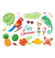 enjoy summer tropical wild plants and animals vector image
